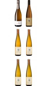 Sipp Mack-kassen - Alsace - Vinområde