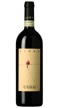 Azörd Monferrato Rosso - Barbera-vine
