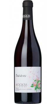 Brachetto Petali de Rose - Italiensk dessertvin