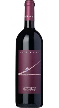 Barbera d'Asti Superiore Nizza, Foravia - Black Friday - vin til vilde priser