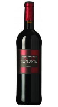 Ribera del Duero, La Planta - Spansk vin