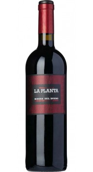 Ribera del Duero, La Planta - Spansk rødvin
