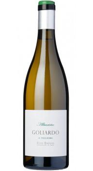 Goliardo A Telleira - Vin for begyndere