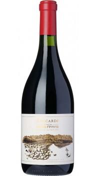Zuccardi Finca Piedra Infinita - Argentinsk vin