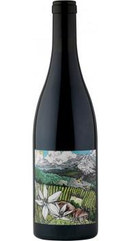 Kelley Fox Mirabai Pinot Noir - Nye vine