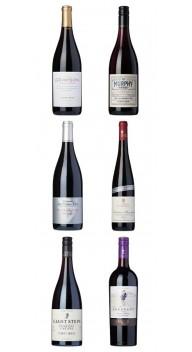 Pinot Noir-kassen - Smagekasser / prøvekasser
