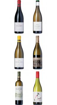 Galicien-kassen Vol. 2 - Vin for begyndere