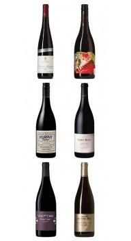 Pinot Noir-kassen 2019 - Smagekasser / prøvekasser